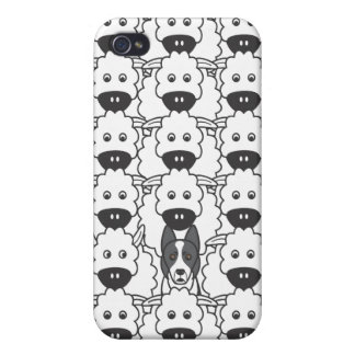 Border Collie in the Sheep Case For iPhone 4