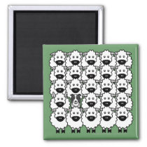 Border Collie in the Sheep Magnet