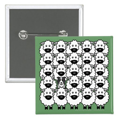 Border Collie in the Sheep Pins