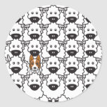 Border Collie in the Sheep Sticker