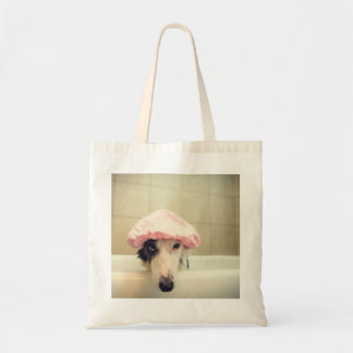 Border Collie in the tub tote