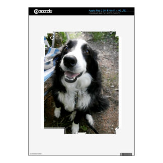 BORDER COLLIE iPad 3 DECAL