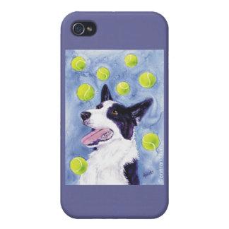 "Border Collie iPhone 4 Case - ""Magpie's Gold"""