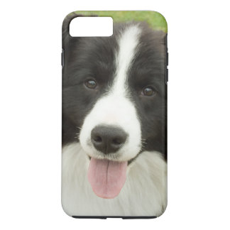 Border Collie iPhone 7 Plus Case