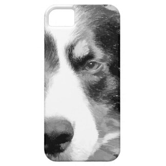 BORDER COLLIE iPhone SE/5/5s CASE