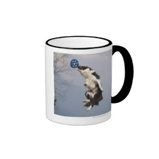 Border Collie just before catching the ball high Mugs