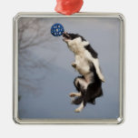 Border Collie just before catching the ball high Christmas Tree Ornament