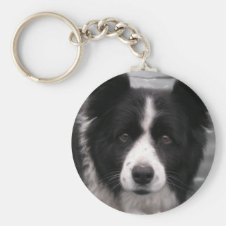 Border Collie Keychain