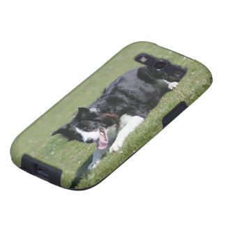 Border Collie Laying Down Samsung Galaxy SIII Covers