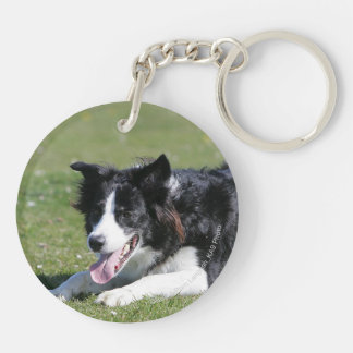Border Collie Laying Down Keychain