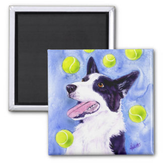 "Border Collie Magnet - ""Magpie's Gold"""
