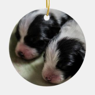 Border Collie Newborn Puppies Ceramic Ornament