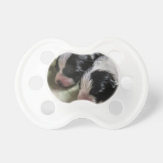 Border Collie Newborn Puppies Pacifier