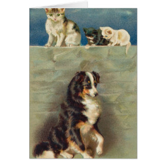 Border Collie Notecard