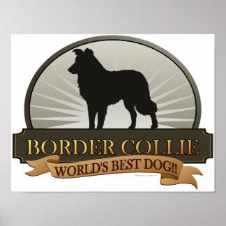 Border collie impresiones