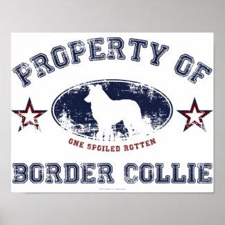 Border collie poster
