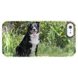 Uncommon iPhone 5/5s Permafrost® Deflector Case with Collie Phone Cases design