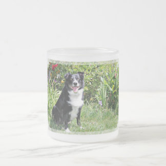 Border Collie - Paddy - Pasten Frosted Glass Coffee Mug
