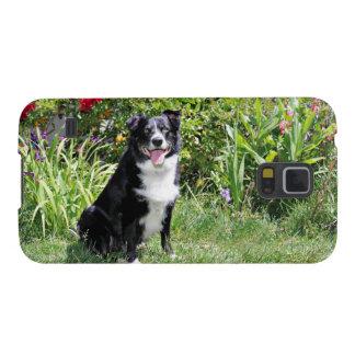 Border Collie - Paddy - Pasten Galaxy S5 Case
