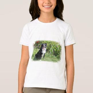Border Collie - Paddy - Pasten T-Shirt