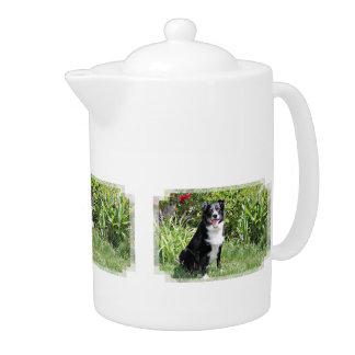 Border Collie - Paddy - Pasten Teapot
