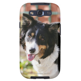 Border Collie Panting 1 Galaxy S3 Cover