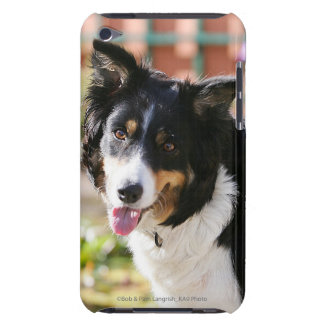 Border Collie Panting 1 iPod Touch Case-Mate Case