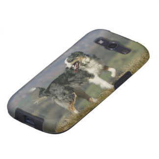 Border Collie Panting 2 Galaxy SIII Case