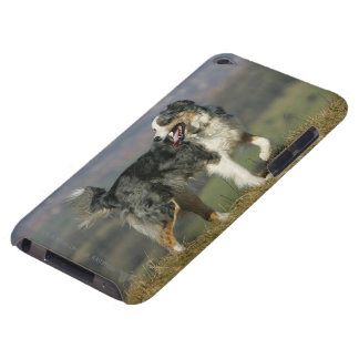 Border Collie Panting 2 iPod Touch Case-Mate Case