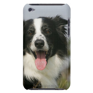 Border Collie Panting Headshot 1 Barely There iPod Cover