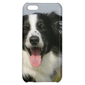 Border Collie Panting Headshot 1 iPhone 5C Cases