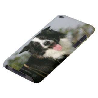 Border Collie Panting Headshot 1 iPod Touch Case-Mate Case