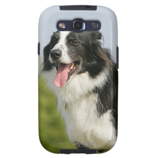 Border Collie Panting Standing Galaxy S3 Covers