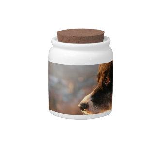 Border Collie Photos Candy Jar