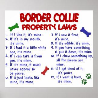BORDER COLLIE PL2 POSTER