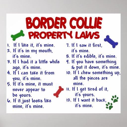 BORDER COLLIE PL2 PRINT