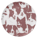 Border Collie Plate