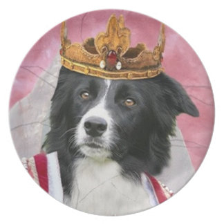 Border Collie Plate~Queen For A Day Dinner Plate