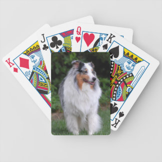 Border Collie Playing Cards Deck