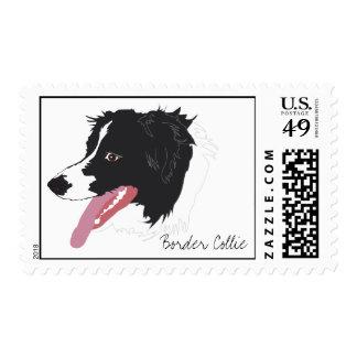 Border Collie Portrait Stamp