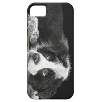 "Border Collie Pup - ""Tell Me More About 'Sheep'"" iPhone SE/5/5s Case"
