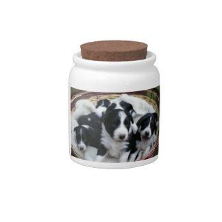 Border Collie Puppies Candy Jar