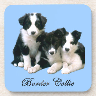 Border Collie Puppies Drink Coaster
