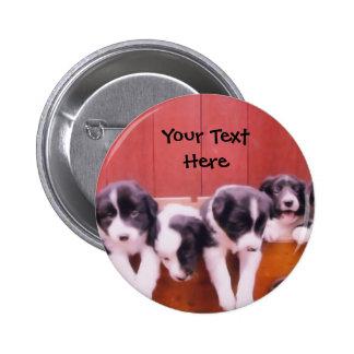 Border Collie Puppies In Drawer Button
