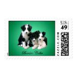 Border Collie Puppies Stamp