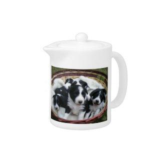 Border Collie Puppies Teapot