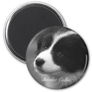 Border Collie puppy 2 Inch Round Magnet