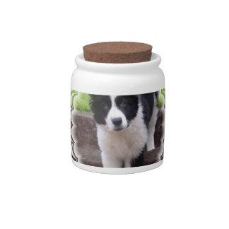 Border Collie Puppy Candy Jar