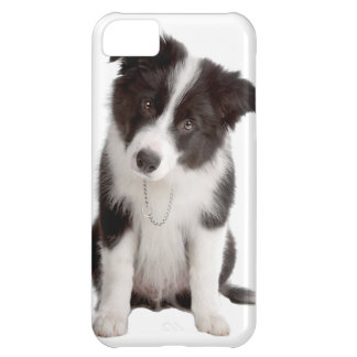 Border Collie Puppy Case For iPhone 5C