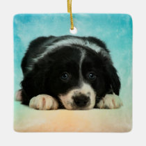 Border Collie Puppy Ceramic Ornament